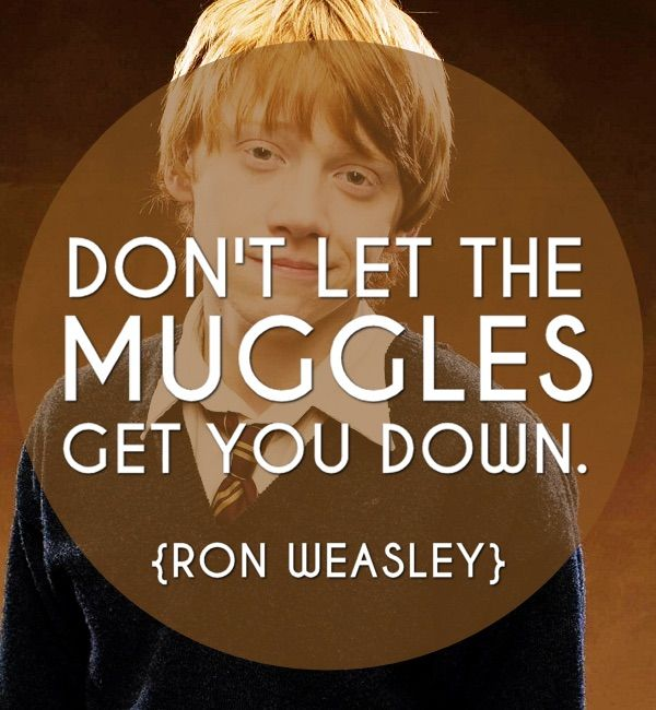 harry potter new year saying