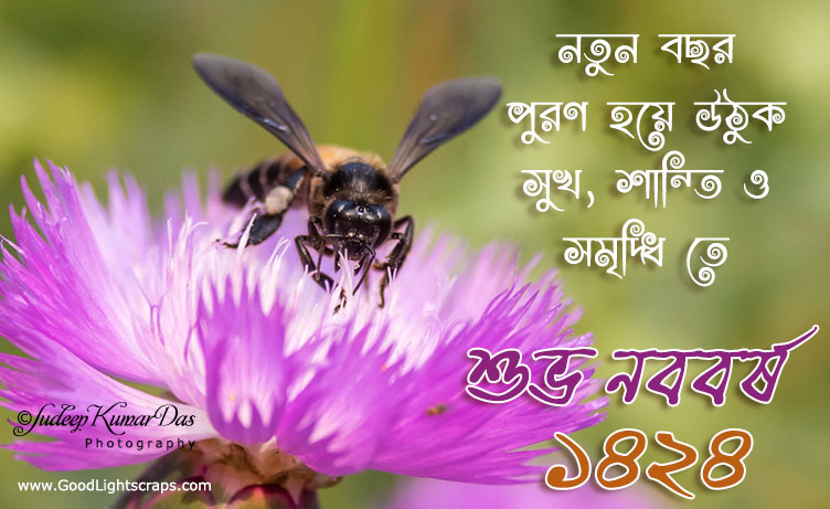 Bengali New Year Greetings – 2019 New Year Images