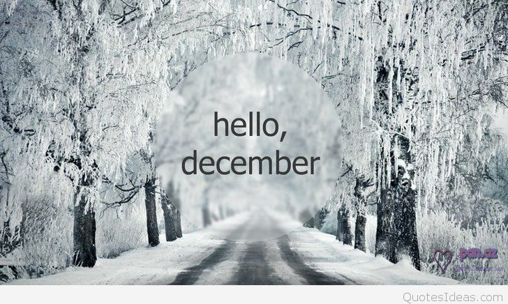 december new year backgrounds