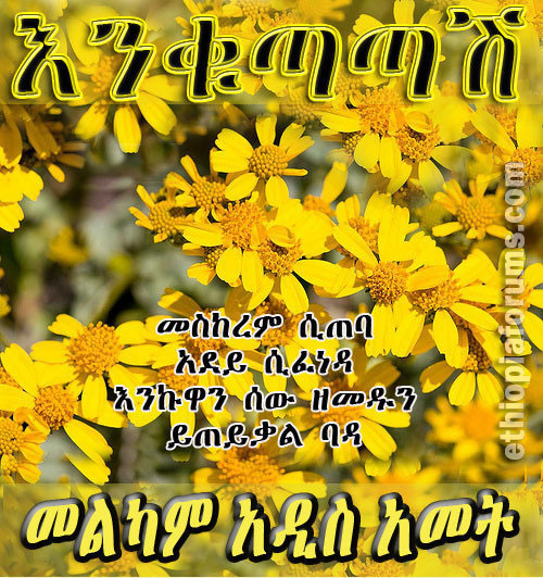 ethiopian new year cards